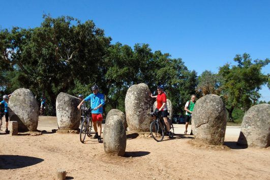 Half and full day bike tours