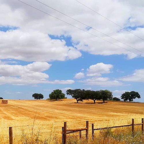 Instagram Five, Cycling Portugal