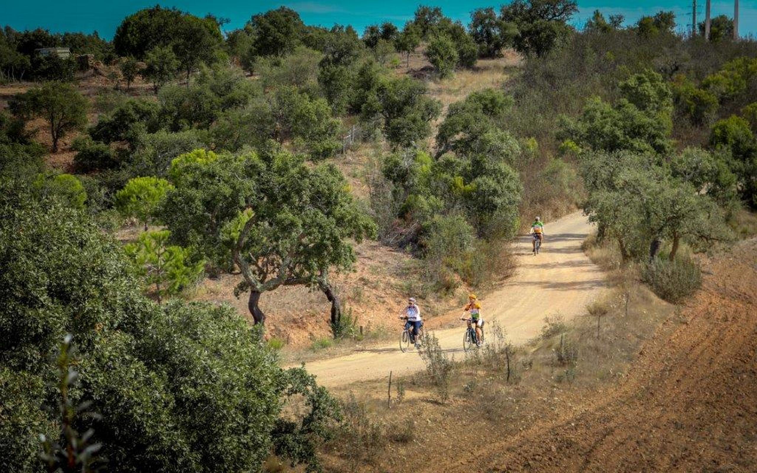 E-bike tours in Portugal