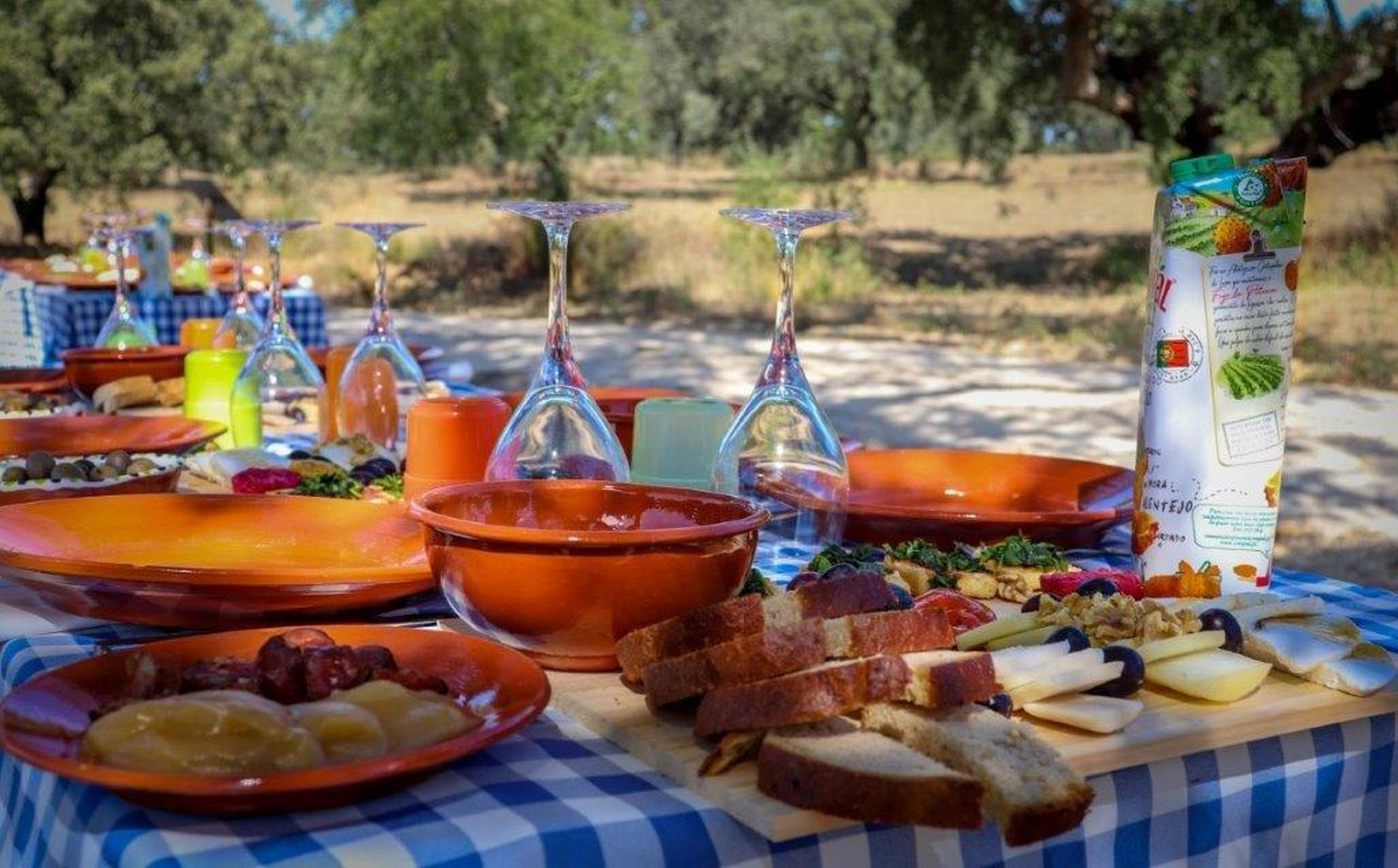 Picnic in our gourmet cycling tours