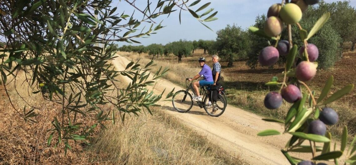 Different cycling tours